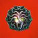 Athena medusa head