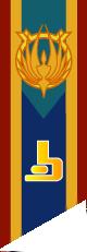 AquariaFlag