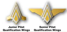 NBSG-PilotWings