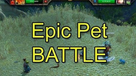 Epic Pet Battle Crendor vs Cox (Mists of Pandaria Beta)