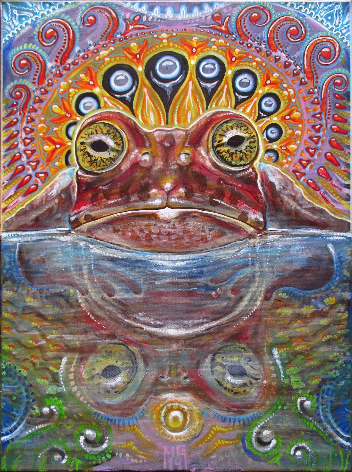 The Cosmic Frog Omniversal Battlefield Wiki Fandom