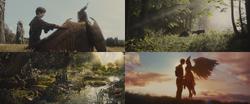 Maléfique film 2014 enfant Stéphane Lande forêt jeux baiser véritable amour sincère seize ans seizième anniversaire