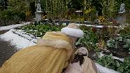 7x09 Raiponce Anastasie bouleversement jardin
