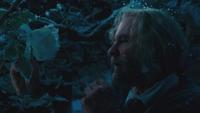 La Belle et la Bête film Disney 2017 rose blanche cueillette mains Maurice mini