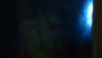 1x19 Lumière bleue forêt
