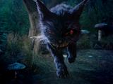 Chat du Cheshire