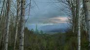 6x18 Oz Palais Emraude ciel forêt