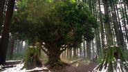 1x20 Bel arbre magique