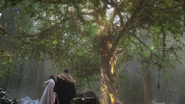 4x13 Blanche-Neige Prince David Charmant arbre de la sagesse réponse lumière jaune