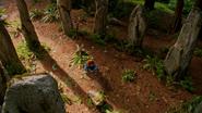 5x01 Merida colline cercle de pierres