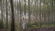 5x08 forêt calédonienne Emma Swan arrivée
