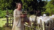 1x06 Bergerie moutons enclos arbres Ruth sac graines