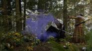6x10 Roi David Reine Blanche-Neige forêt téléportation violette
