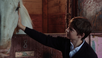 2x05 Henry Mills boxe cheval