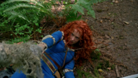 5x01 Merida Emma Swan sol forêt feuillage relève