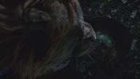 6x18 Lion Poltron dos Zelena Méchante Sorcière de l'Ouest proie danger