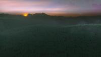4x16 forêt infinie