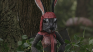 W1x08 Mme Madame Lapin forêt mains hanches