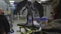3x13 Frère Tuck Petit Jean transformation Singe Volant hôpital de Storybrooke