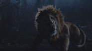 6x18 Lion Poltron apeuré pleurs