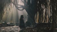 Into the Woods Cendrillon tombe mère arbre saule pleureur mini