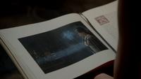 Regina condamnée fée bleue livre 4x07