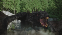W1x07 dragon