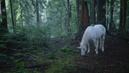 4x16 Licorne blanche