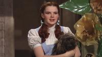 Le Magicien d'Oz (film) 1939 Dorothy Gale Dorothée Carter chien Toto arrivée Pays d'Oz
