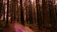 5x17 Magie loup forêt Enfers