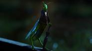 1x05 Jiminy Cricket criquet parapluie