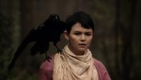2x08 Mary Margaret Blanchard épaule oiseau corbeau corneille