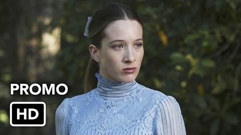 Who's Alice Promo