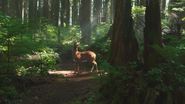 1x07 cerf cible Chasseur forêt enchantée