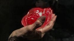 Verzaubertes Herz