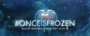 Photo Once is Frozen Apple Regina S4
