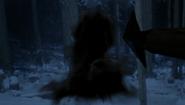 6x17 Flèche tirée neige forêt nuit direction téléportation noire arbre droite superficie