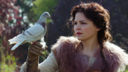 1x10 Blanche-Neige colombe pigeon voyageur fiole potion