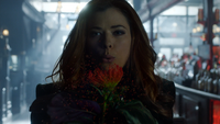 Gotham 4x14 Poison Ivy Pepper souffle fleur grains pollen
