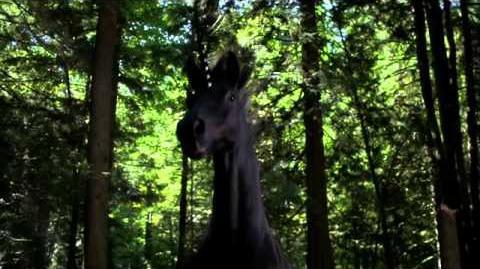 OUAT Zauberwald (Vergangenheit) 2x05 -1 (eng