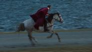 1x01 Prince Charmant David cheval