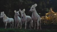 Cendrillon film Disney 2015 cheval chevaux oreilles de souris carrosse d'or doré mini