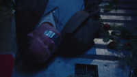 1x12 Moe French prisonnier camion fleurs roses
