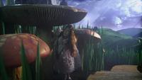 W1x01 Alice champignons magiques Pays des Merveilles
