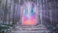 6x14 porte portail Jardin de Cupidon