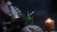 5x12 Jiminy Cricket perdu désorienté déséquilibré allumette