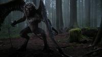 3x15 Singe Volant debout forêt de Storybrooke blessé aile