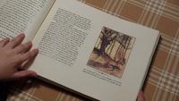 3x10 Livre de contes Chaperon rouge forêt Loup-garou