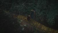 4x17 Robin de Locksley des Bois Will Scarlet adieux Pays d'Oz porte magique rideaux verts route de briques jaunes bûcheron homme en fer blanc souche arbres