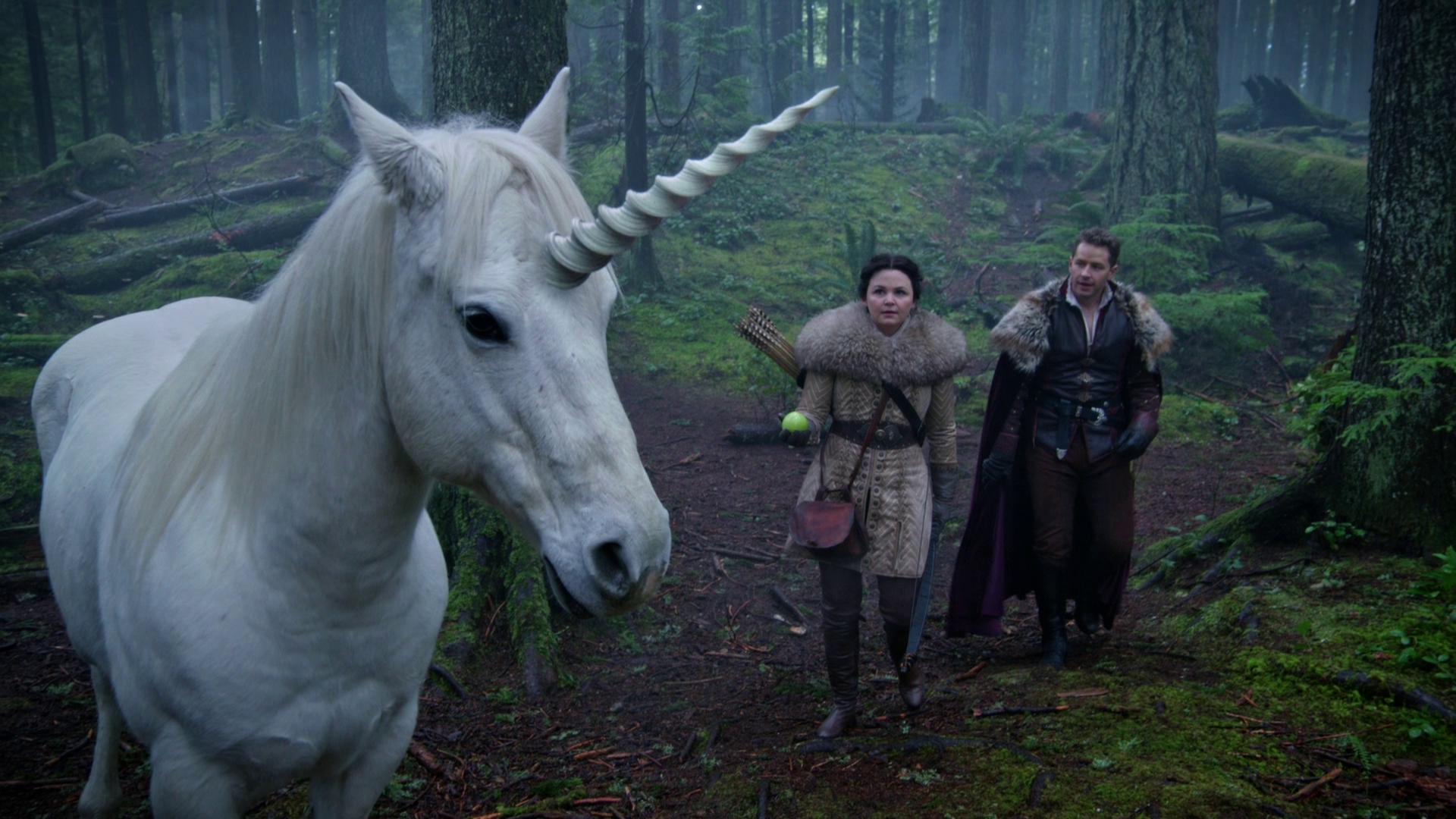 Unicorns Once Upon A Time Wiki Fandom Powered By Wikia